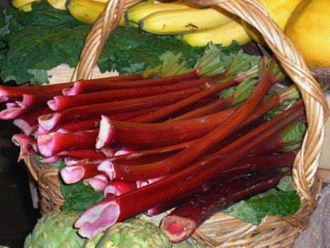 rhubarb-at-the-market