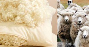 Как правильно выбрать наполнитель для подушки