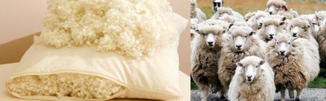 овца и подушка